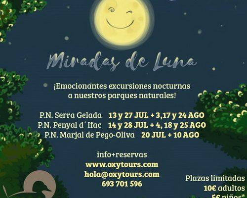 59miradas-nocturna_resize