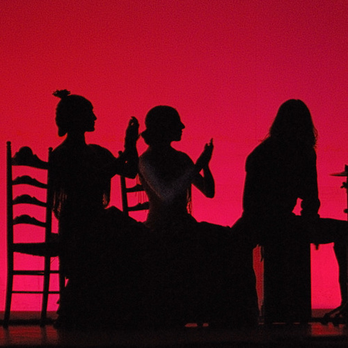 actuaciones flamenco directo