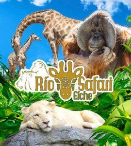 El parque Rio Safari de Elche