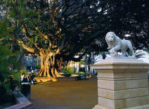 Los parques de la ciudad de Alicante: