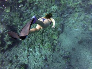 snorkeling-984422__340